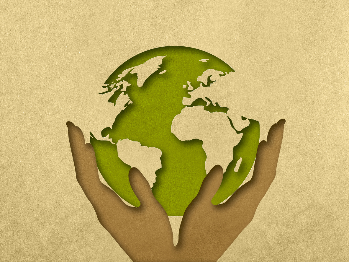 is paper renewable